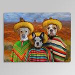 '3 Amigos' Personalized 3 Pet Blanket
