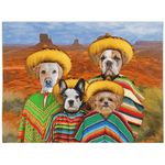 '4 Amigos' Personalized 4 Pet Blanket