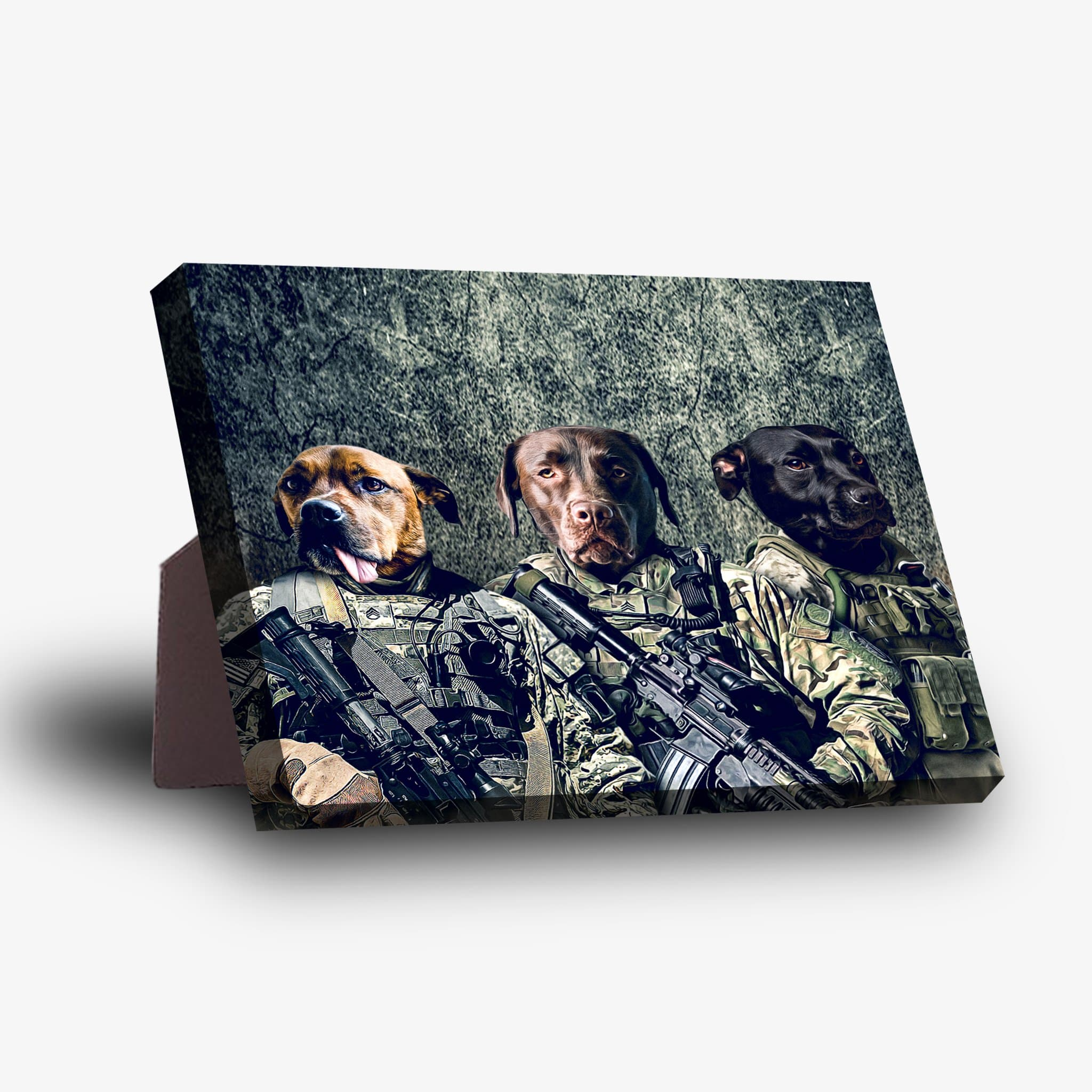 'The Army Veterans' Personalized 3 Pet Standing Canvas
