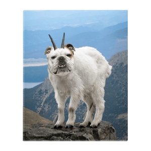 'Mountain Doggoat' Personalized Pet Standing Canvas