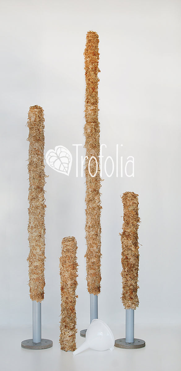 Trofolia Straight-Up Moss Pole are made from 100% Premium Sphagnum Moss. These poles are extendable, simple to water and will not fall over as your plant grows! The perfect moss pole for climbing plants growing in soil, LECA or sphagnum moss!