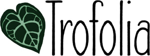 At Trofolia we offer quality specialty rare exotic tropical houseplants & plant supplies for all your growing needs! From the rarest of plants to our innovative Straight-Up Moss Poles to support climbing aroids like Monsteras & Philodendron!