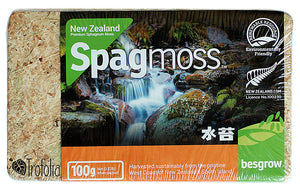 New Zealand Premium Sphagnum Moss 100g