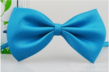 Load image into Gallery viewer, Pet Bow Tie