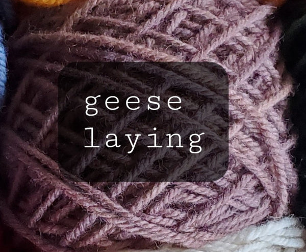 12 Days of Christmas Yarn: Six geese a-laying/85 yrd