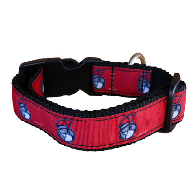 Rome Braves Dog Collar