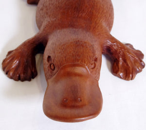 Platypus carved Northern Red Almond