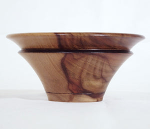 Bowl Camphor Laurel
