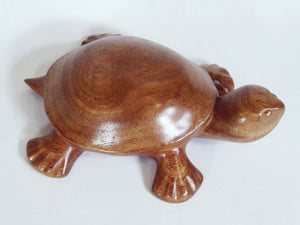Carved timber Turtle