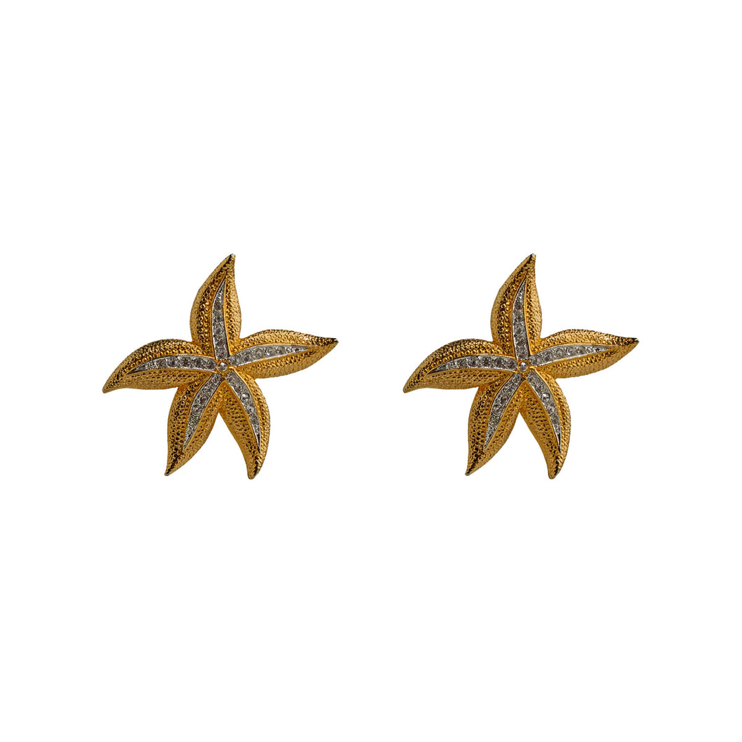 Earrings ~ Starfishes