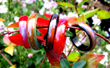 Load image into Gallery viewer, black, red, green agate mood rings in the garden