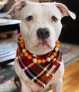 Pumpkin Pie Wooden Bead Collar