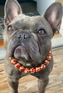 Safari Wooden Bead Collar - FINAL SALE