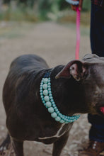 Load image into Gallery viewer, Turquoise Ceramic Triplo Bead Collar