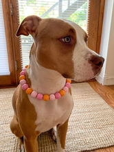 Load image into Gallery viewer, Sweet Tart MINI Wooden [Small Dog/Cat Bead Collar]