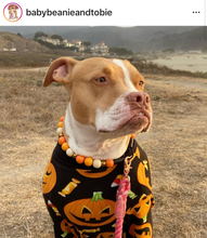 Load image into Gallery viewer, Pumpkin Pie Wooden Bead Collar