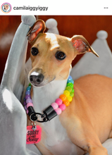 Load image into Gallery viewer, Tropical Rainbow Duplo MINI Wooden [Small Dog/Cat Bead Collar]