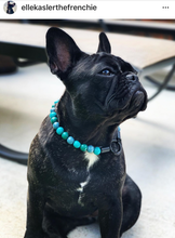 Load image into Gallery viewer, Blue Green MINI Wooden [Small Dog/Cat Bead Collar]