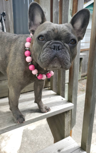 Pink Crush Spiked Bead Collar