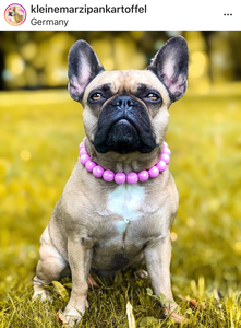 Pink Crush MINI Wooden [Small Dog/Cat Bead Collar]