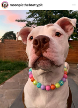 Load image into Gallery viewer, Electric Rainbow Bead Collar