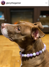 Load image into Gallery viewer, Lilac Glitz Bead Collar