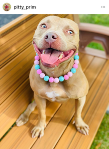 Cotton Candy Wooden Bead Collar