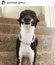 Load image into Gallery viewer, Unicorn XS Mermaid Pearl [Small Dog/Cat Bead Collar]