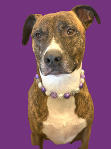 Purple Glitz Bead Collar