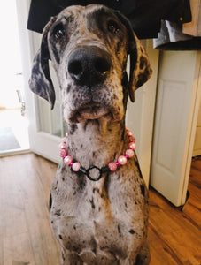 Pink Disco Bead Collar