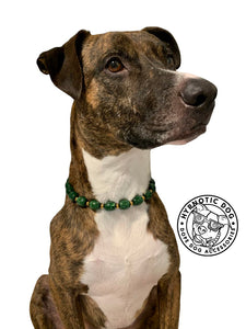 Green & Gold Link Bead Collar