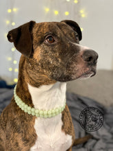 Load image into Gallery viewer, Duplo Green Glow in the Dark Mini [Small Dog/Cat Bead Collar]