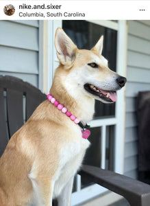 Pink Ombré Wooden Bead Collar