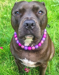 Very Berry Wooden Bead Collar
