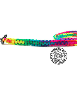 Rainbow Paracord Leash