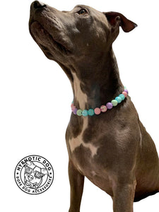 Spring POP Bead Collar