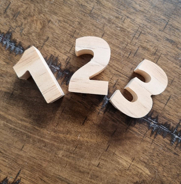 Solid Wooden Numbers Large