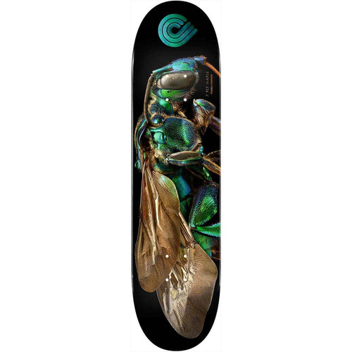 Powell Peralta Cuckoo Bee Flight Deck - 8