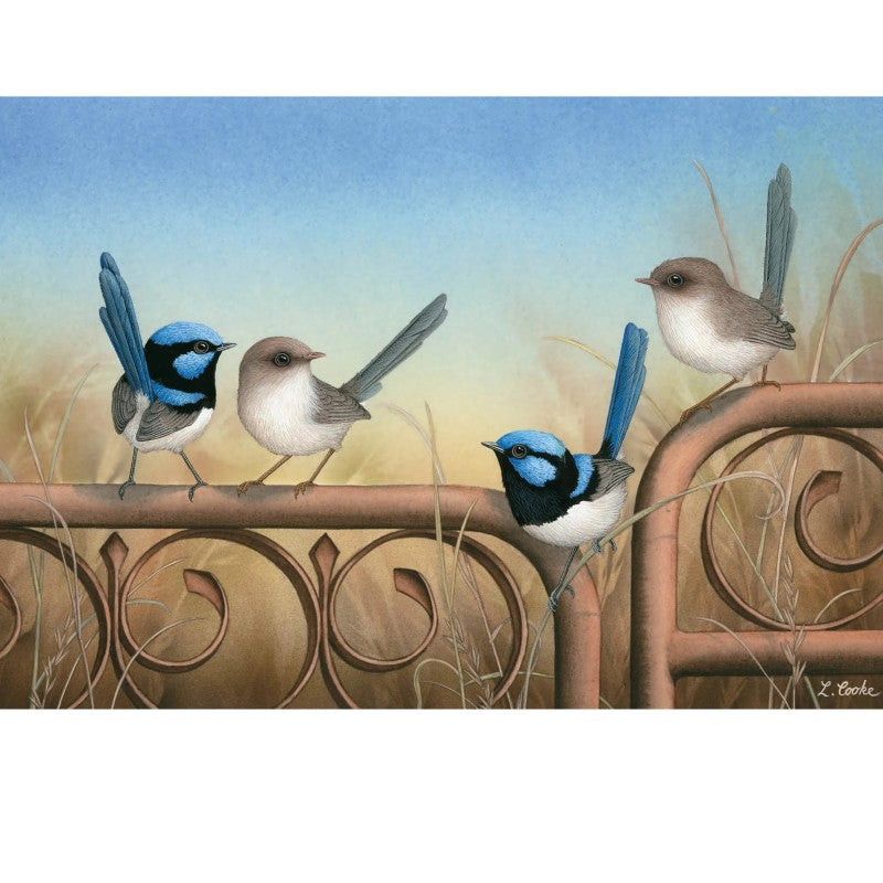Card Blue Wrens (on metal gate)