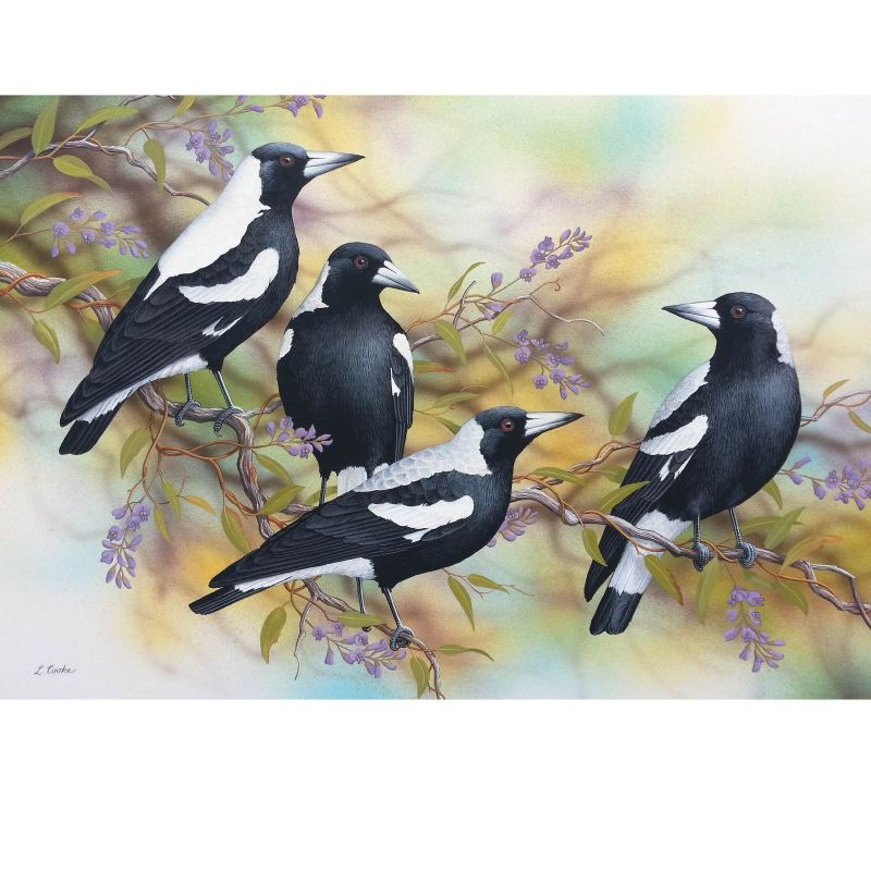 Card Magpies on Hardenbergia