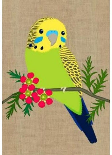 Card Budgerigar Super Cute