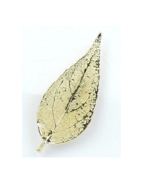 Brooch Eucaleaf Gold