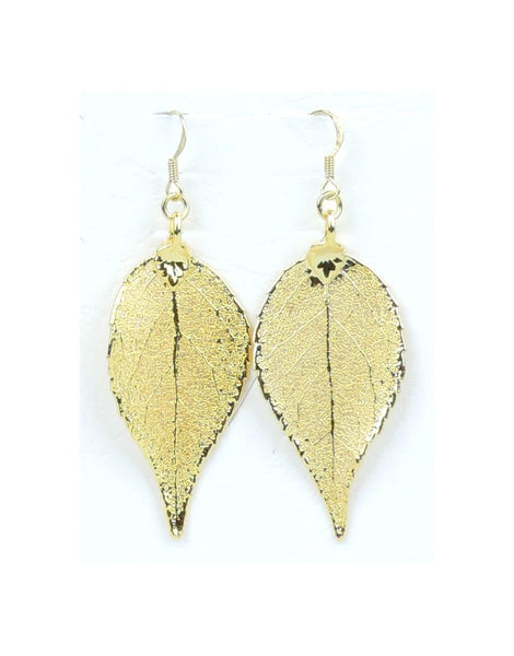 Earrings Pierced Eucaleaf Gold