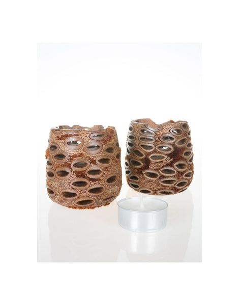 Tealights Hollow Boxed Pair Banksia