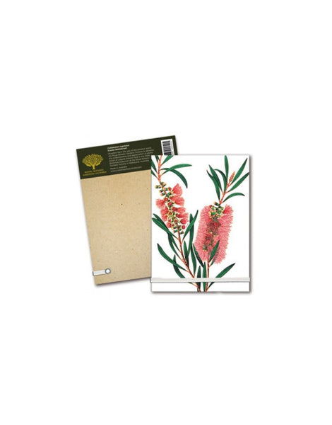 Notepad A6 Bottle Brush