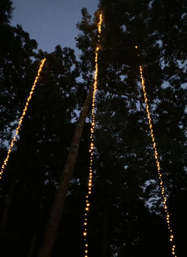 How to String Lights On an Outdoor Tree