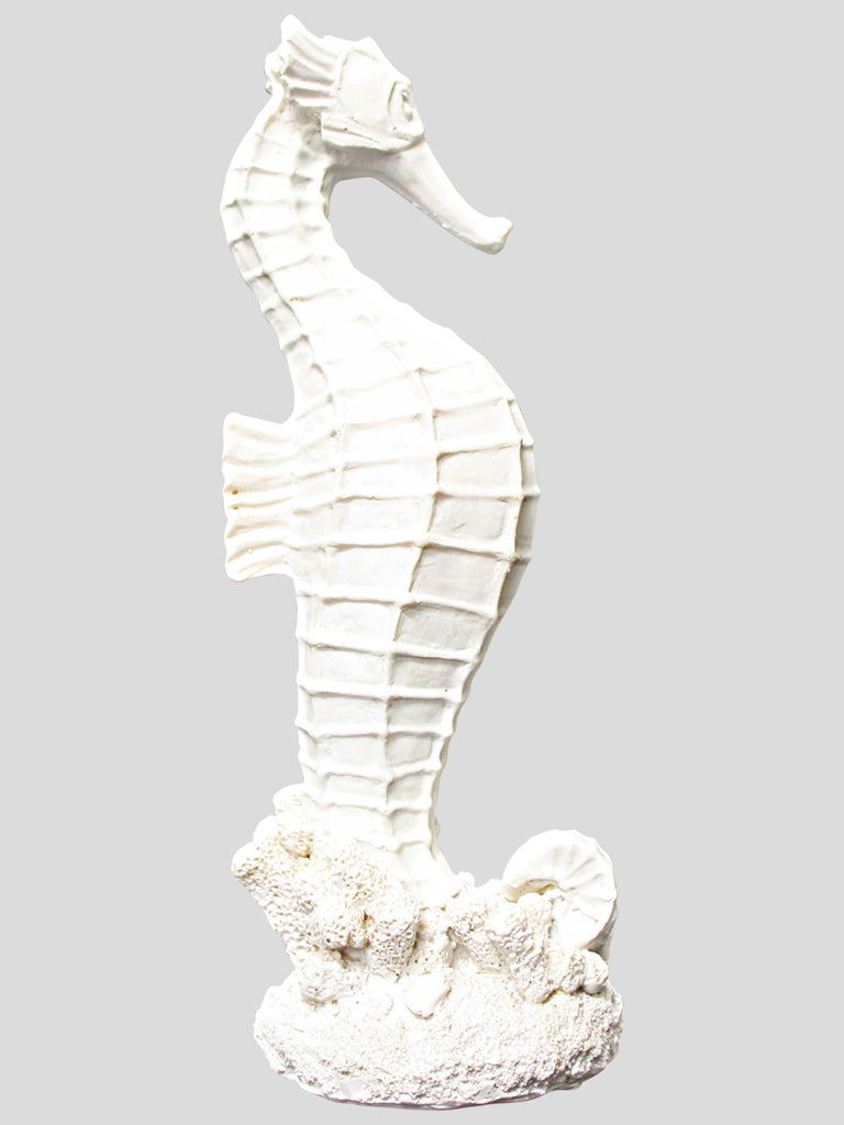Seahorse Standing