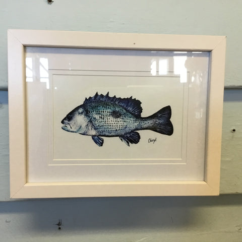 Framed CF Fish Art Work
