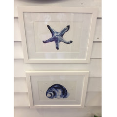 Framed Print Blue Starfish