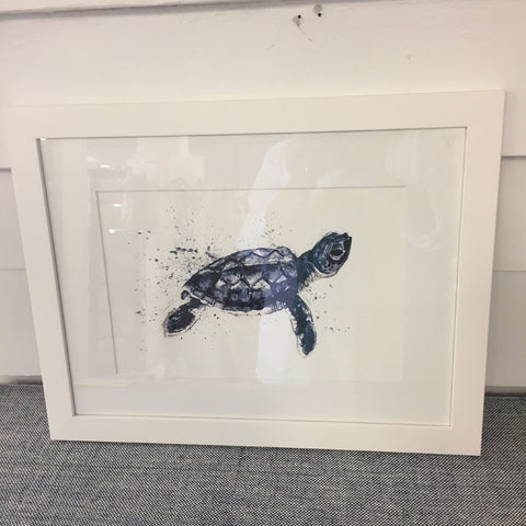 Framed Print Blue Turtle
